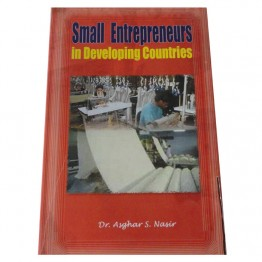 Small Enterpreneurs in Developing Countries